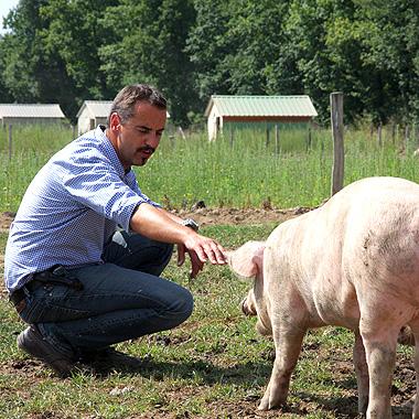 Jean Dijols et ses cochons d'Auvergne
